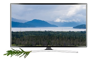 Kitimat TV
