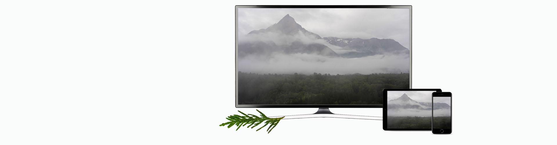 New TV Banner Hazelton