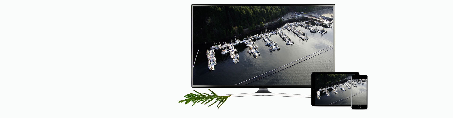New TV Banner Prince Rupert 2