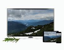 New TV Banner Terrace Mobile