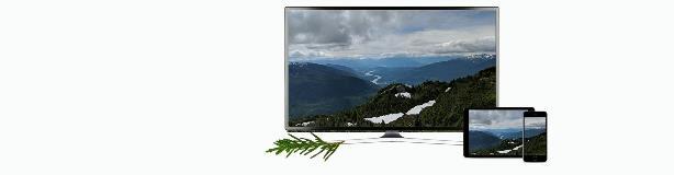 New TV Banner Terrace